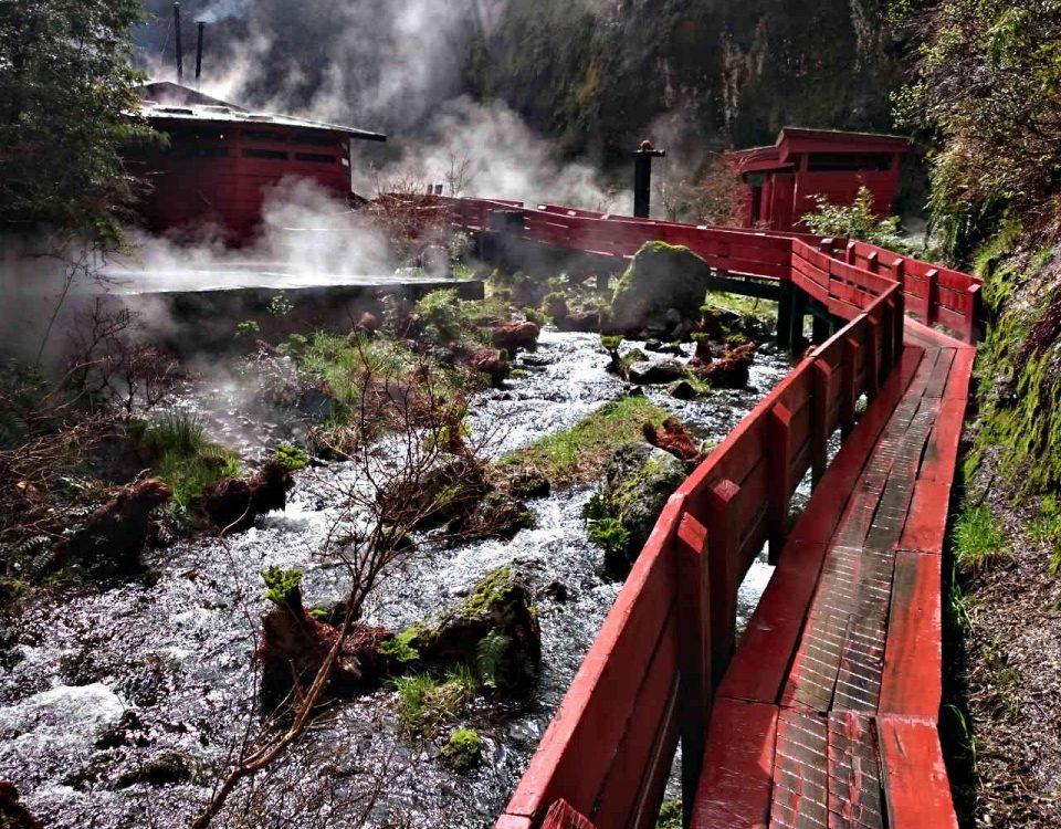 Vulkanskitour in Chile